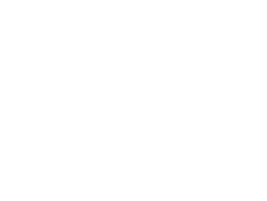 kavli-logo-fake