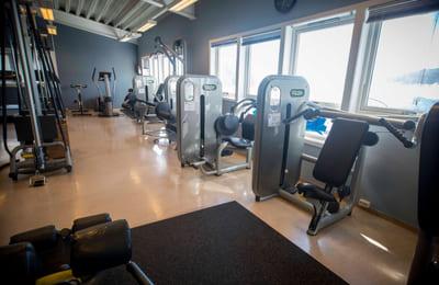 Gjerdrum Fysioterapi og Trening