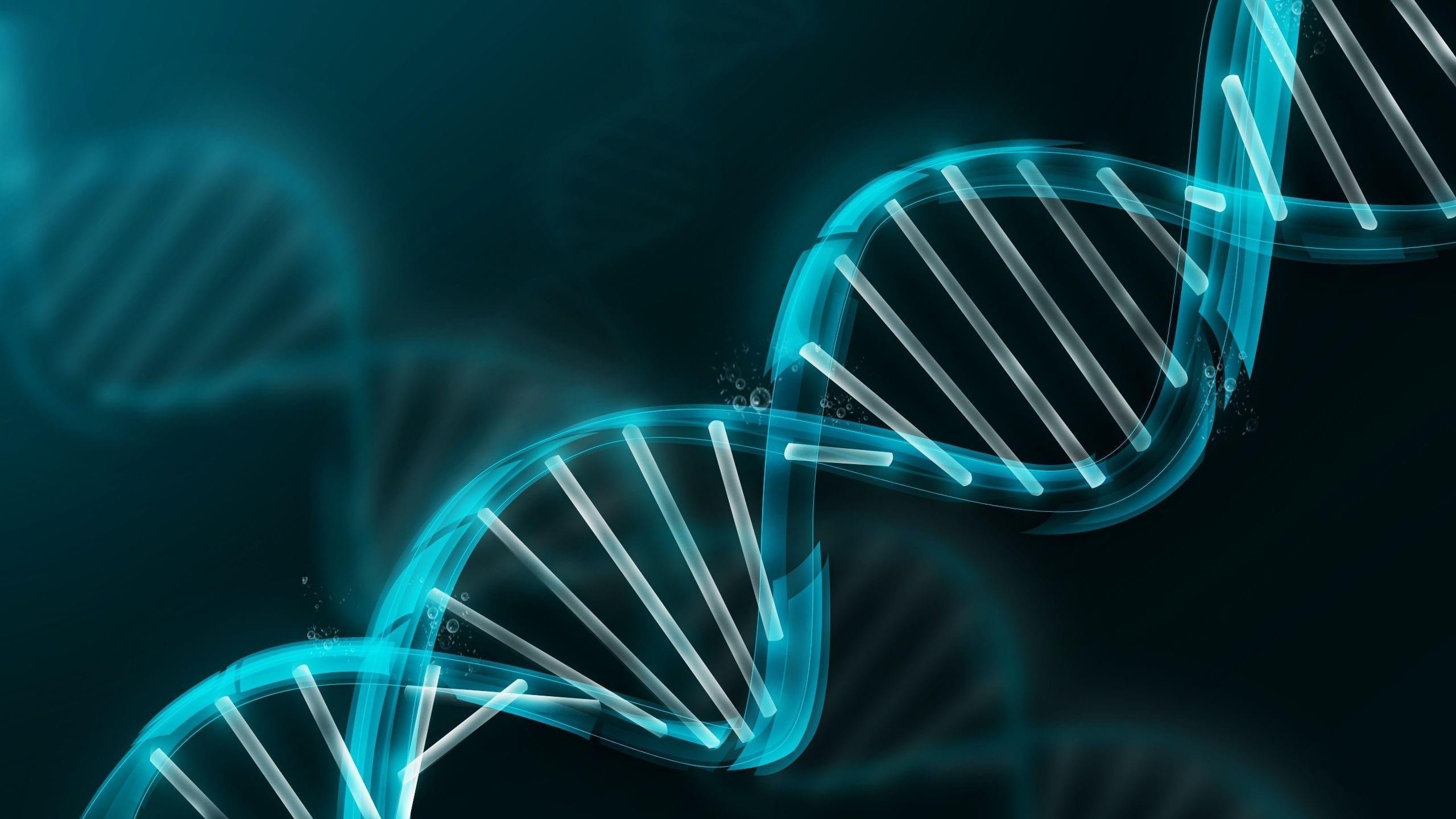 Kvalitetsstyring ligger i vårt DNA