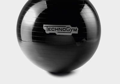 Wellness Ball™ Training träningsboll
