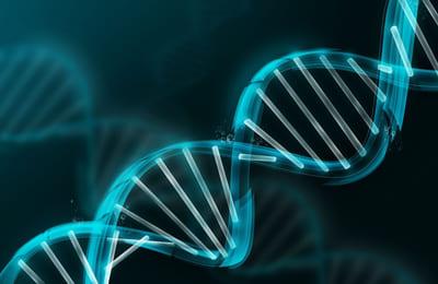 Kvalitetsledning ligger i vårt DNA
