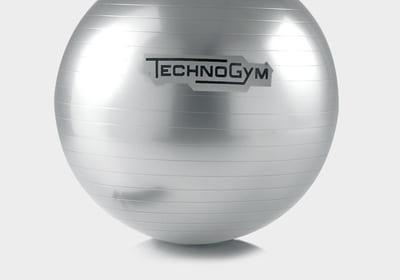 Technogym Wellness Ball – Jumppapallo