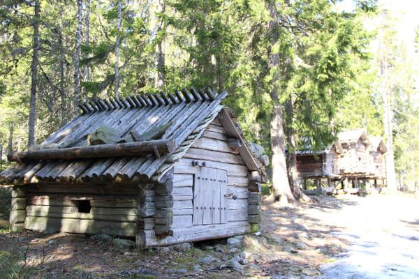 en timrad liten byggnad i skogsbrynet