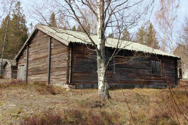 en timrad byggnad i vårsolen